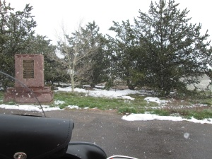 The white spots are snow.
