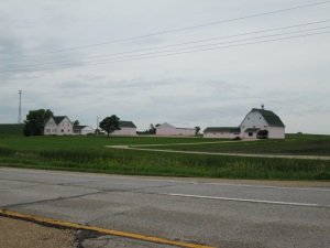 All of the buildings on this farm are pink.