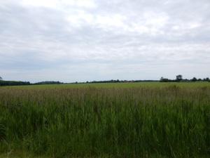 Canada farmland