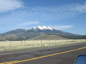 Mt. Eldon 9,300 ft. I can't get away from snow. ;-)