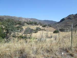 California desert.
